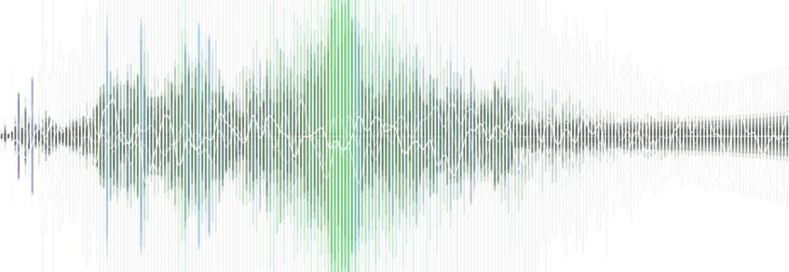 EVP Waveform