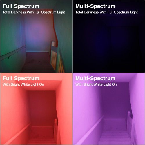 Full spectrum camcorder for ghost hunting comparison grid